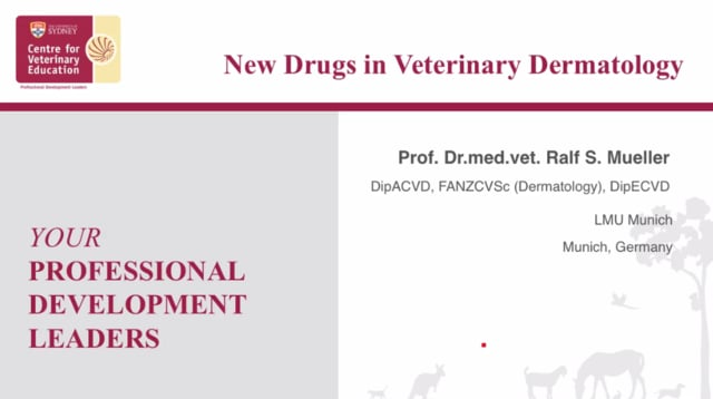 New Drugs in Veterinary Dermatology