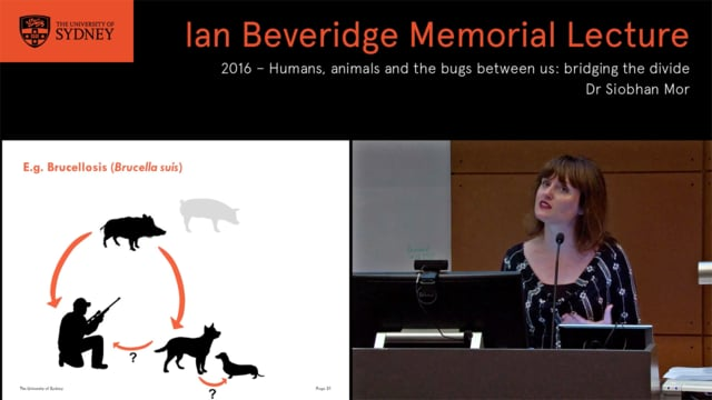 Humans, Animals And The Bugs Between Us: Bridging The Divide