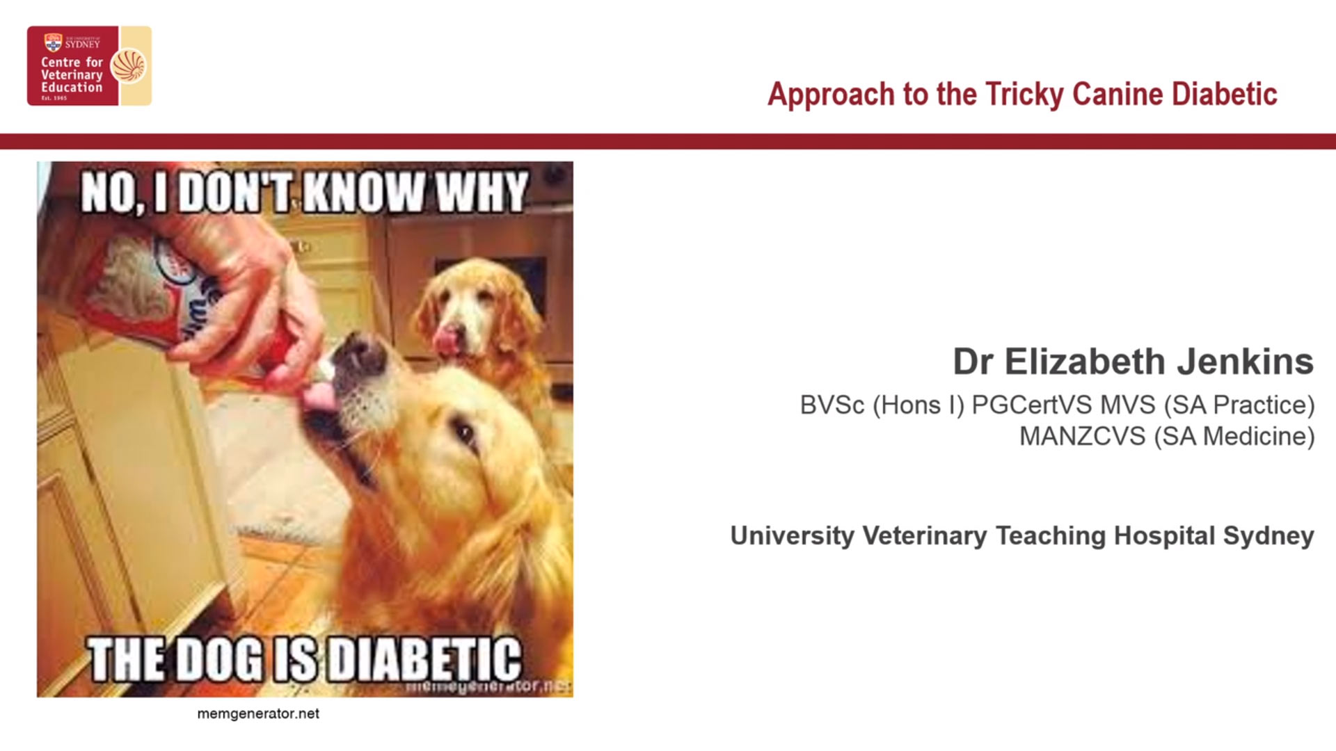 Approach to the tricky canine diabetic